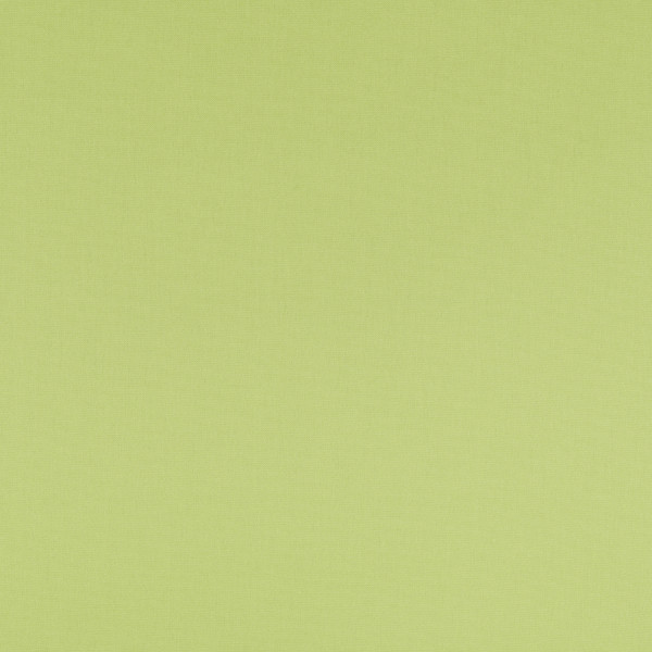 Markisenstoff Dralon® Design 64 Uni Hellgrün